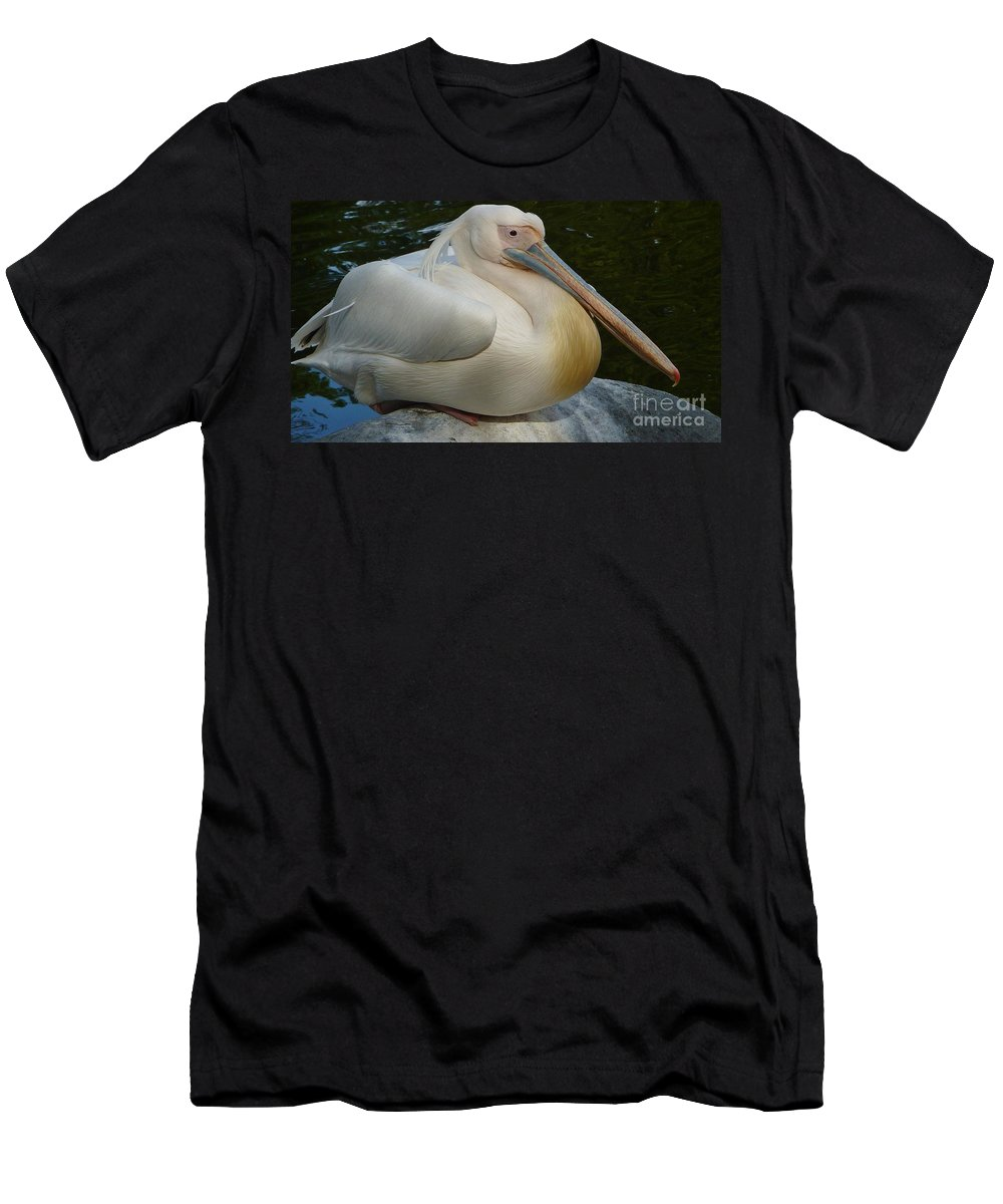 White Pelican Sitting Men's T-Shirt (Athletic Fit) featuring the photograph White Pelican Sitting by Susan Garren