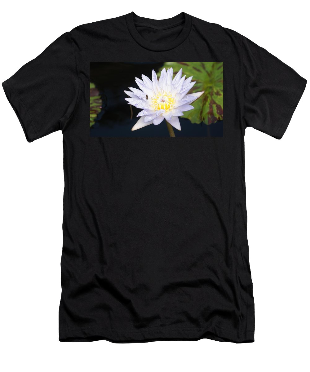 White Men's T-Shirt (Athletic Fit) featuring the photograph White Waterlily With Fly...  # by Rob Luzier