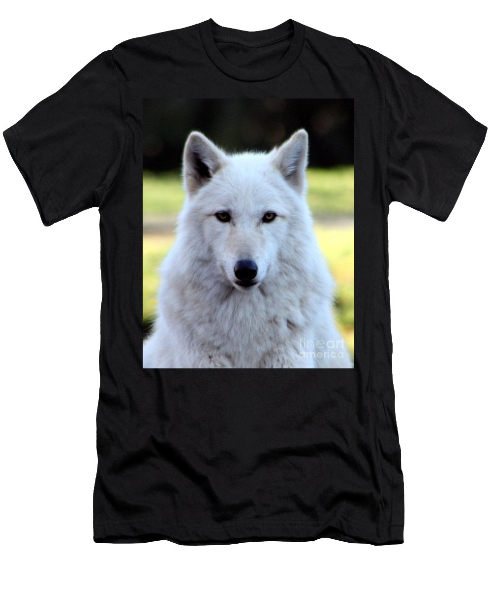 White Wolf Men's T-Shirt (Athletic Fit) featuring the photograph White Wolf Close Up by Nick Gustafson