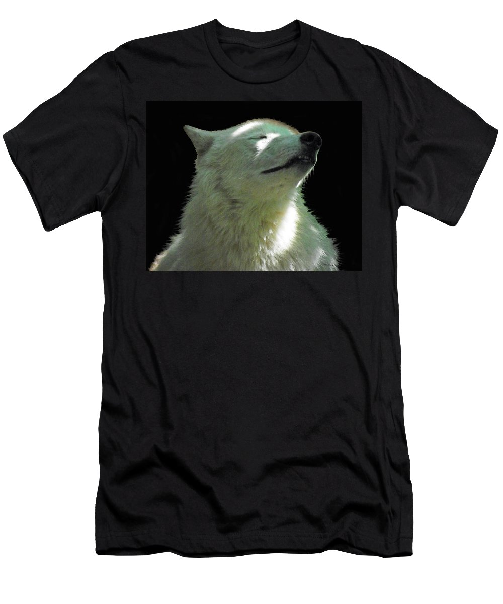 Duane Mccullough Men's T-Shirt (Athletic Fit) featuring the photograph White Wolf In The Shade by Duane McCullough