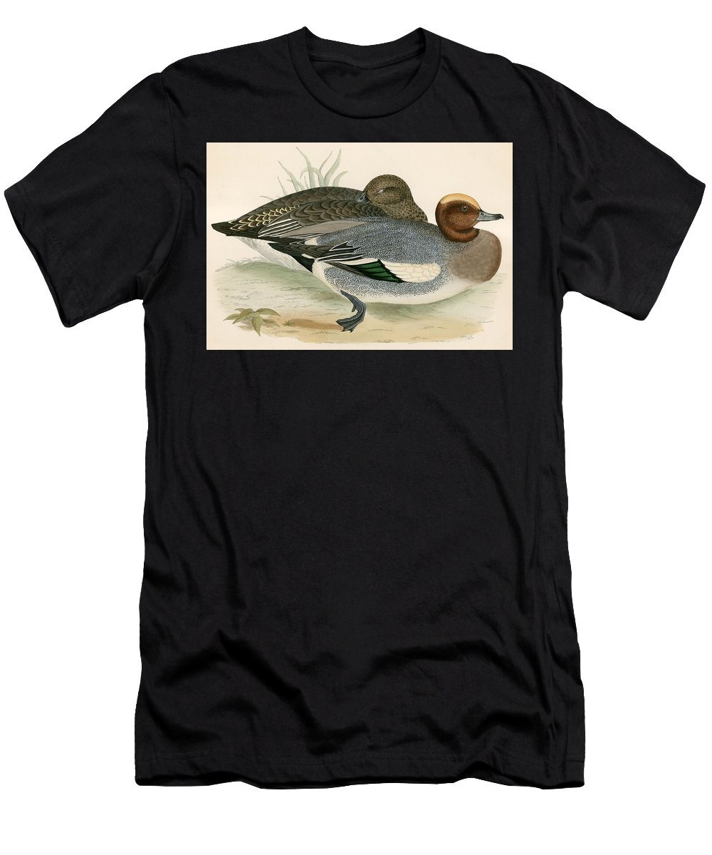 Duck Men's T-Shirt (Athletic Fit) featuring the painting Wigeon by Beverley R Morris