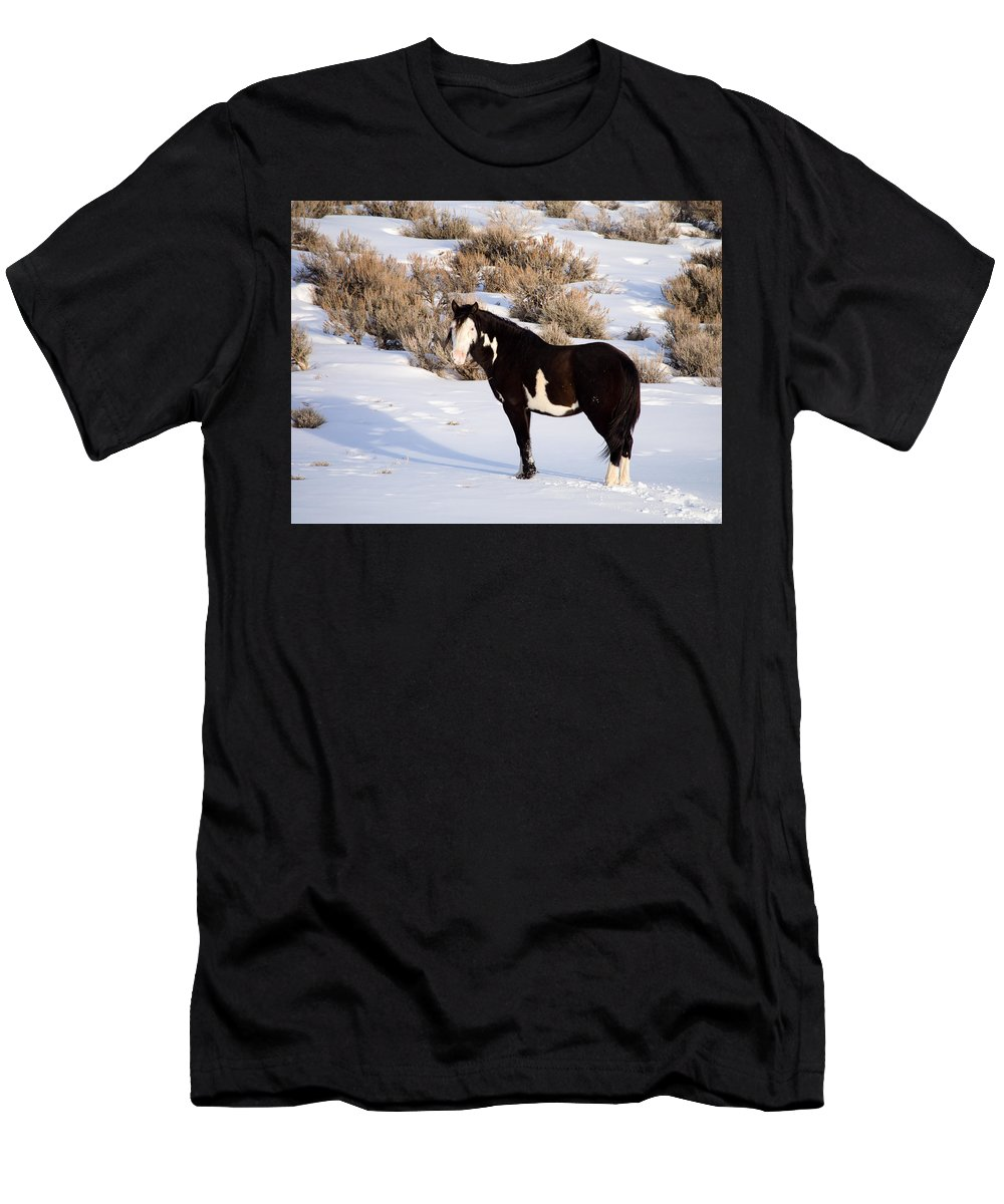Wild Horse Men's T-Shirt (Athletic Fit) featuring the photograph Wild Horse Stallion by Nadja Rider