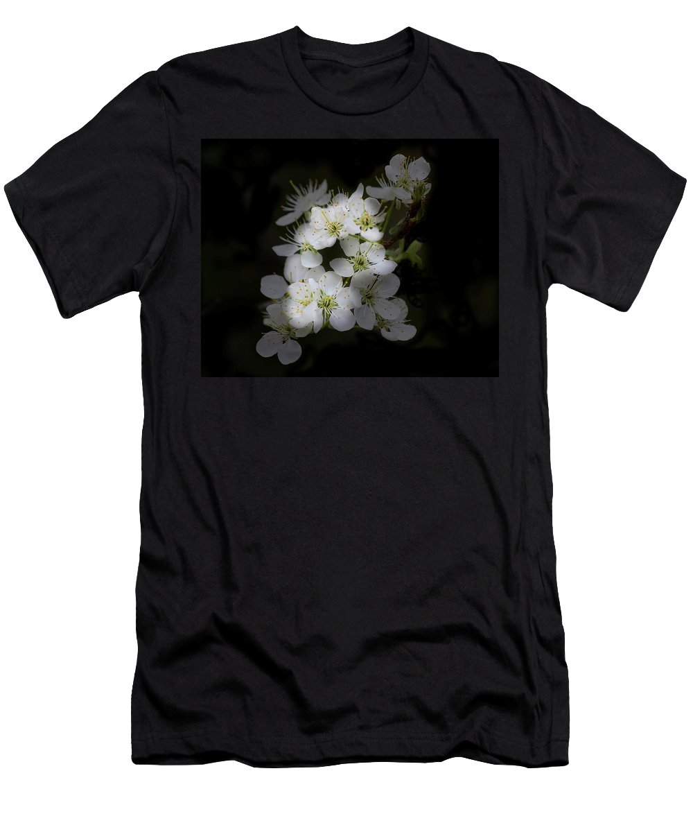 Flowers Men's T-Shirt (Athletic Fit) featuring the photograph Wild Roses by TN Fairey