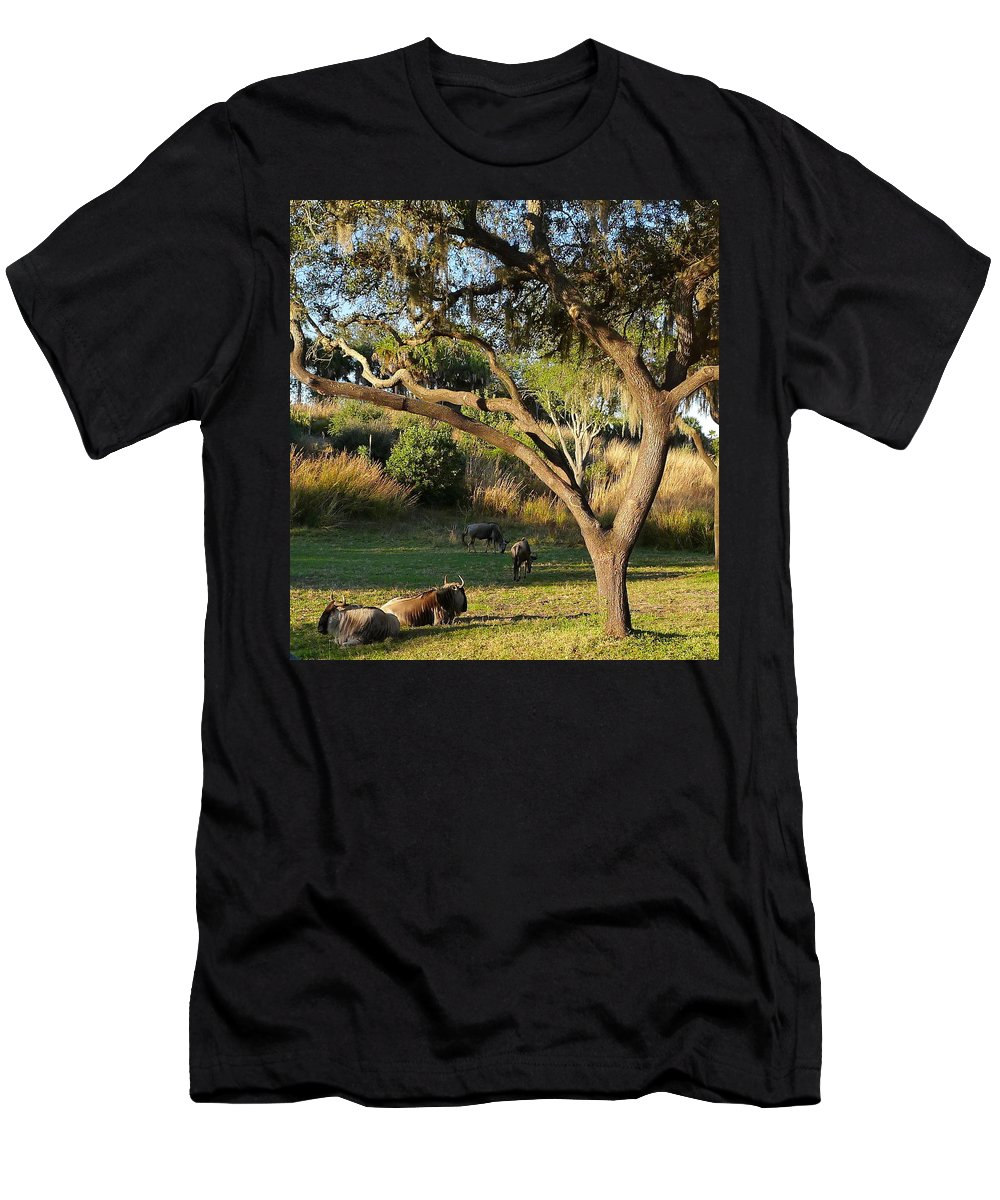 Animal Men's T-Shirt (Athletic Fit) featuring the photograph Wildebeest by Denise Mazzocco