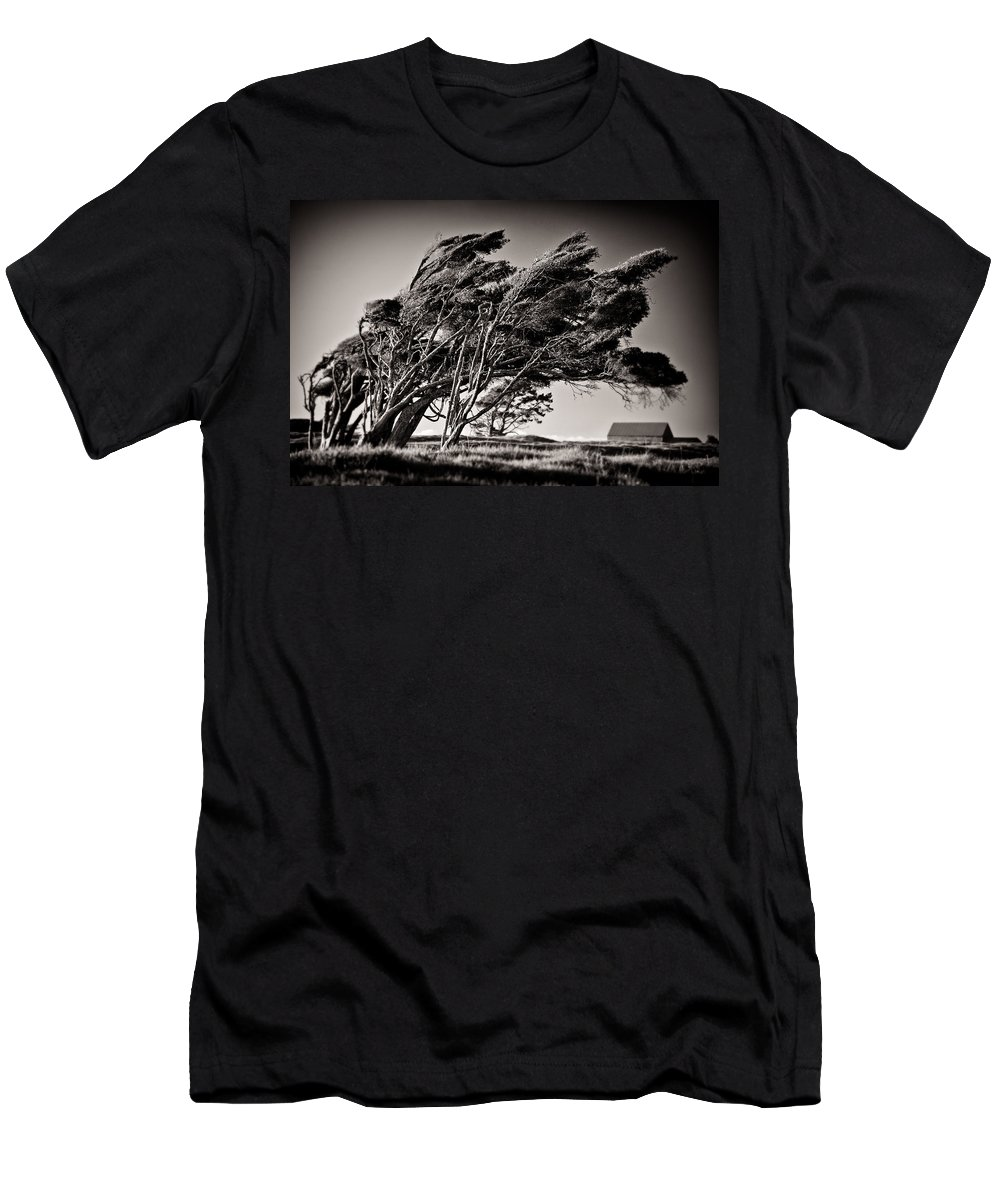 Windswept Trees Men's T-Shirt (Athletic Fit) featuring the photograph Windswept by Dave Bowman