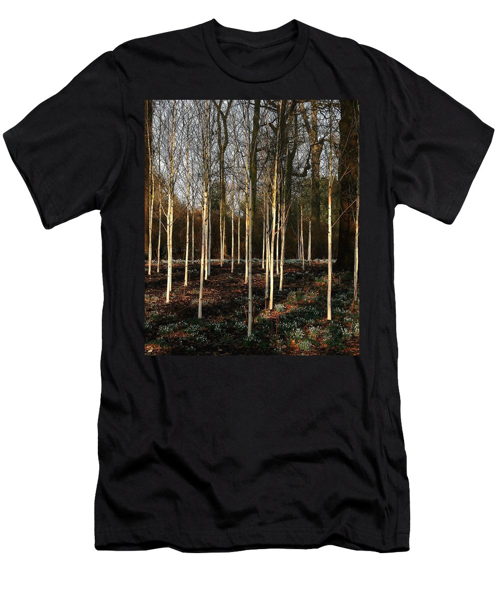 Winter Men's T-Shirt (Athletic Fit) featuring the photograph Winter Garden by Mo Barton