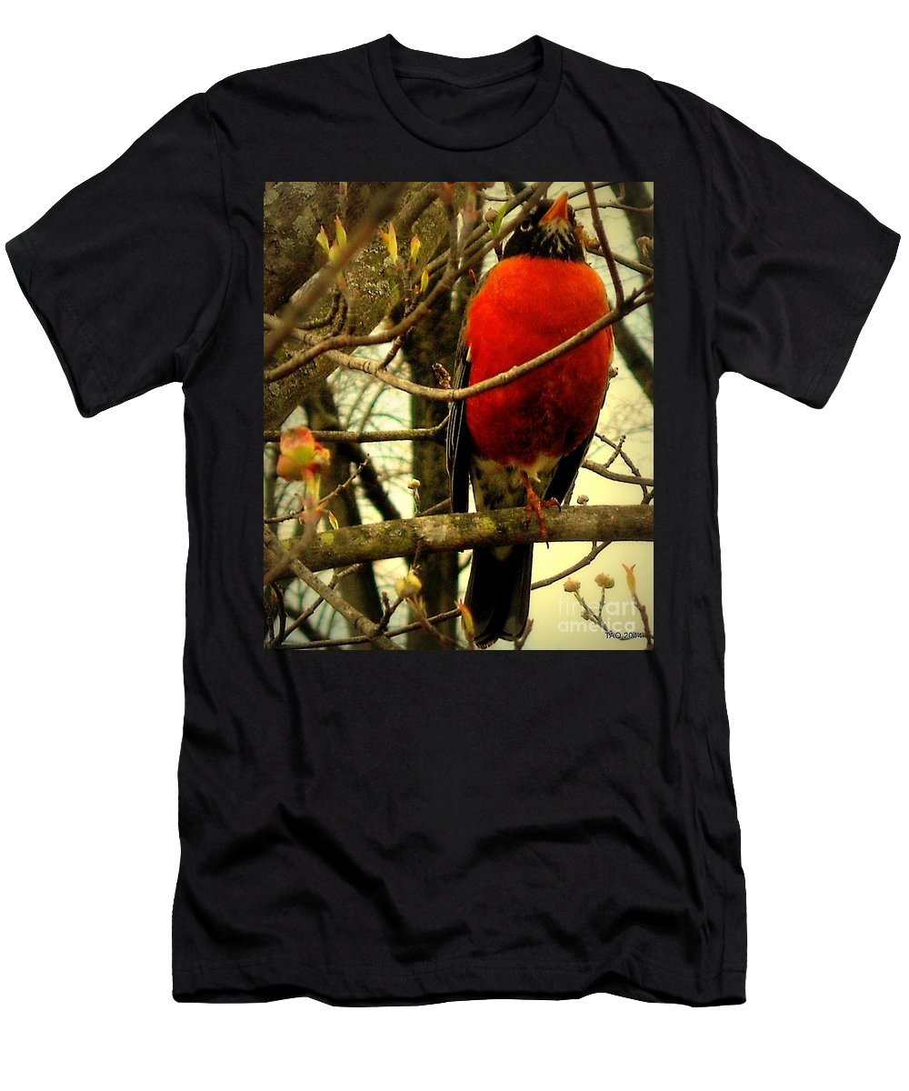 Robin Men's T-Shirt (Athletic Fit) featuring the photograph With A Song In My Heart by Tami Quigley