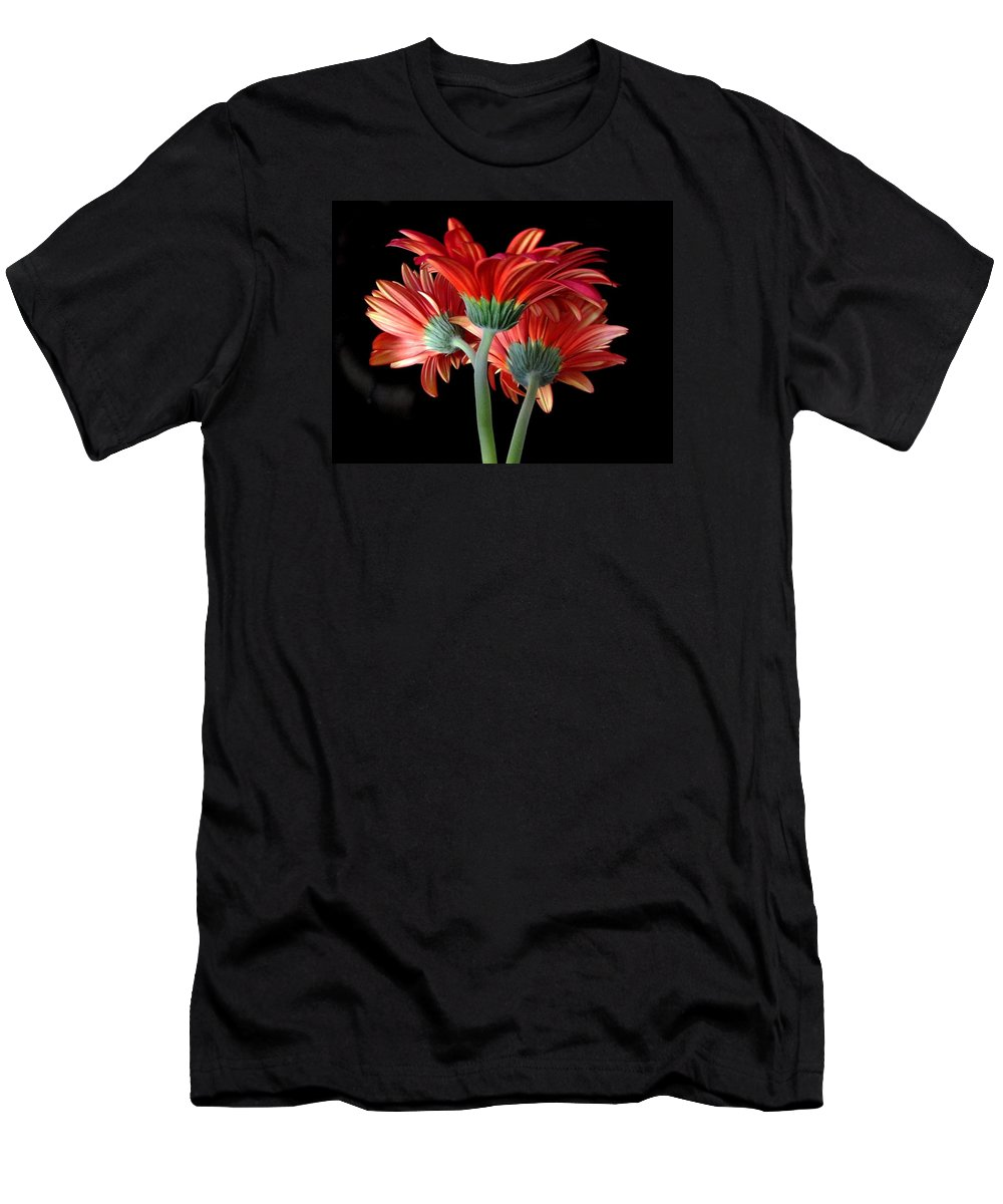 Gerbera Daisy Men's T-Shirt (Athletic Fit) featuring the photograph With Love by Brenda Pressnall