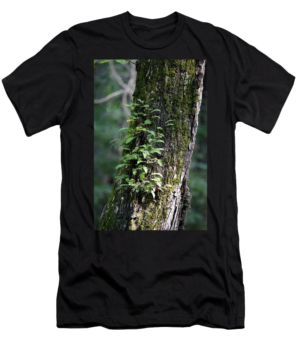 Wood Flora 2013 Men's T-Shirt (Athletic Fit) featuring the photograph Wood Flora 2013 by Maria Urso