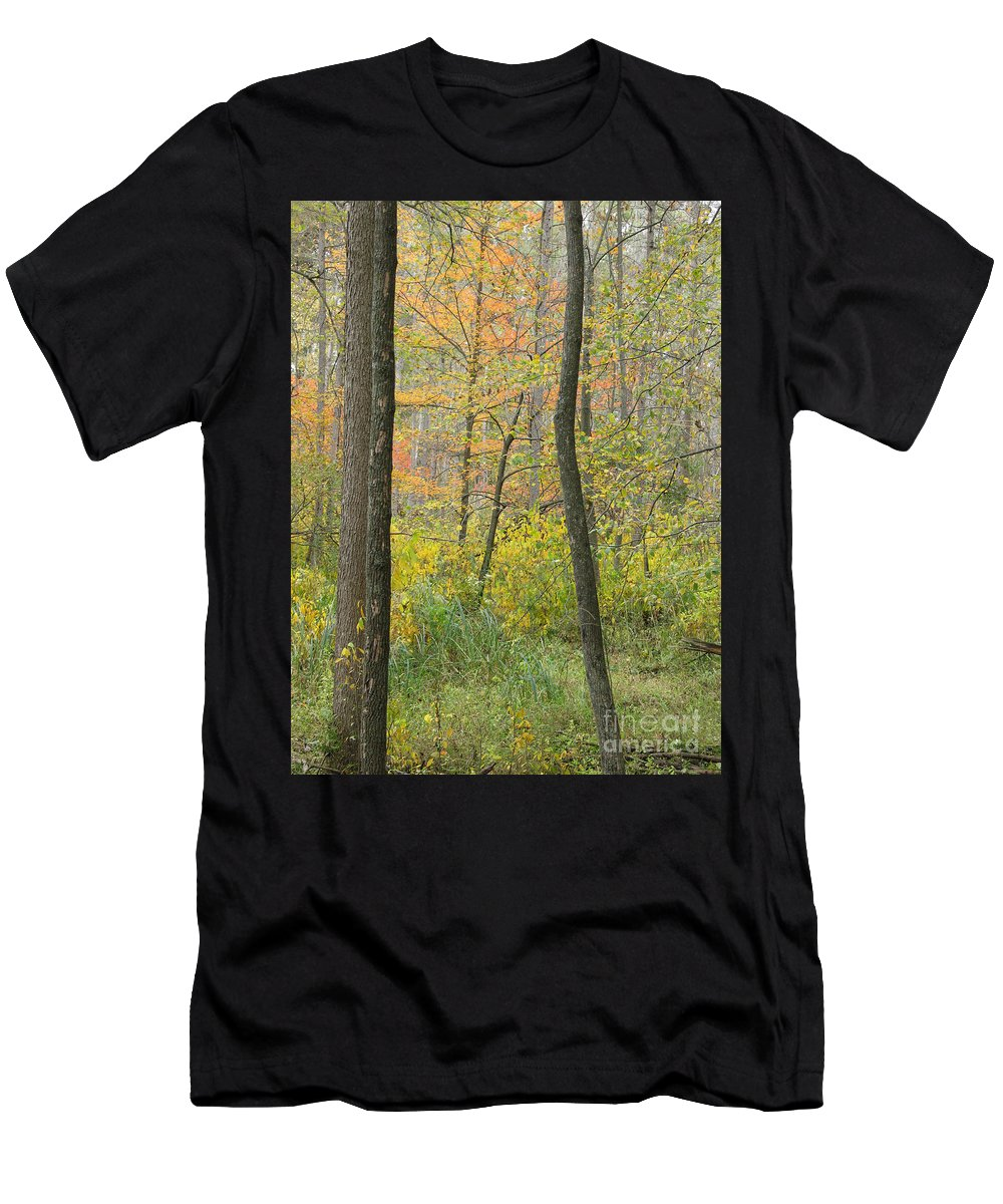Autumn Men's T-Shirt (Athletic Fit) featuring the photograph Woodland Interior by Ann Horn