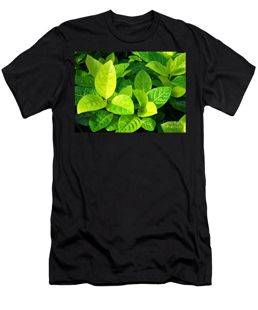 Leaves Men's T-Shirt (Athletic Fit) featuring the photograph Yellow And Green Leaves by Nancy Mueller