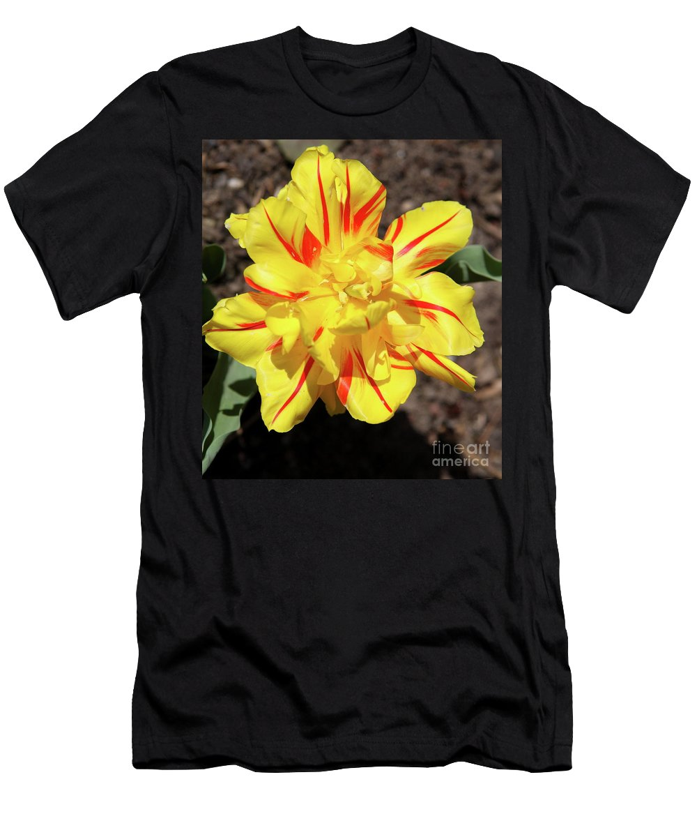 Tulip Men's T-Shirt (Athletic Fit) featuring the photograph Yellow And Red Tulip by Christiane Schulze Art And Photography