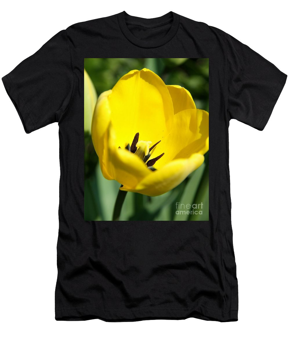 Tulip Men's T-Shirt (Athletic Fit) featuring the photograph Yellow Tulip Cup by Christiane Schulze Art And Photography