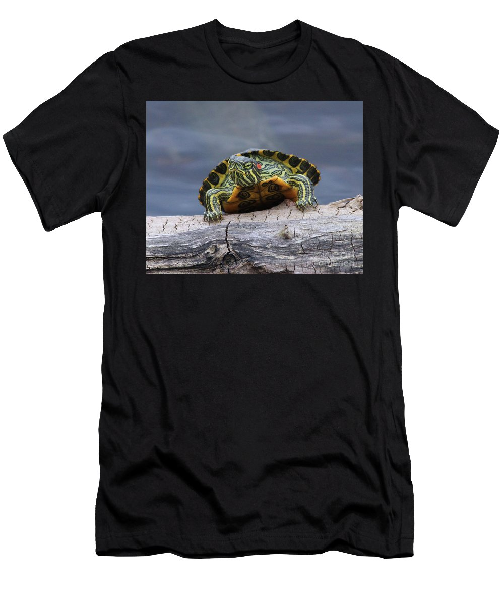 Turtle Men's T-Shirt (Athletic Fit) featuring the photograph Young Turtle by TN Fairey