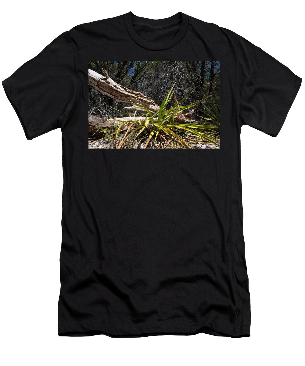 Pedernales Falls Park Men's T-Shirt (Athletic Fit) featuring the photograph Pedernales Park Texas Yucca By The Dead Tree by JG Thompson