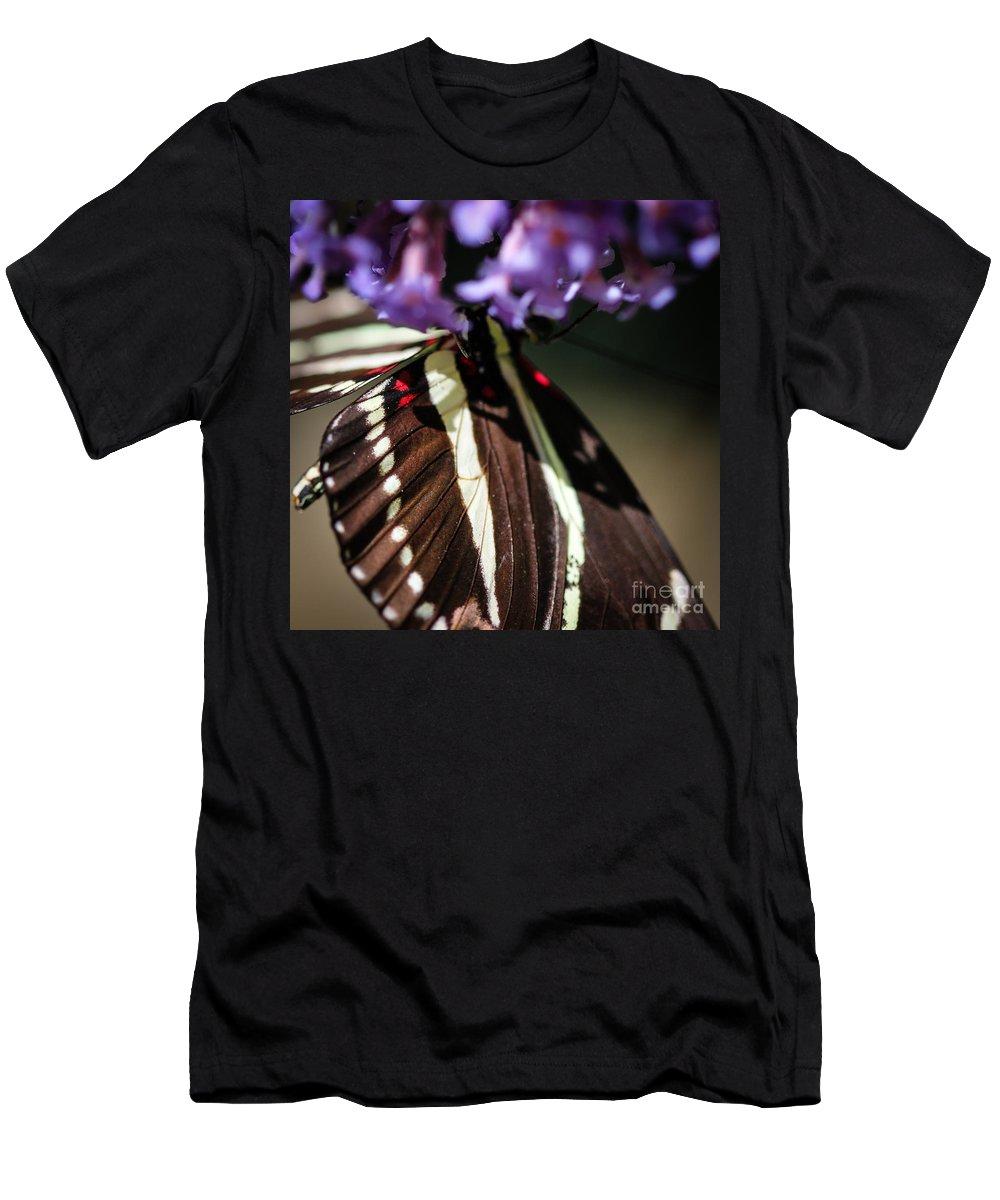 Zebra Men's T-Shirt (Athletic Fit) featuring the photograph Zebra Heliconian Heliconius Charithonia by Henrik Lehnerer