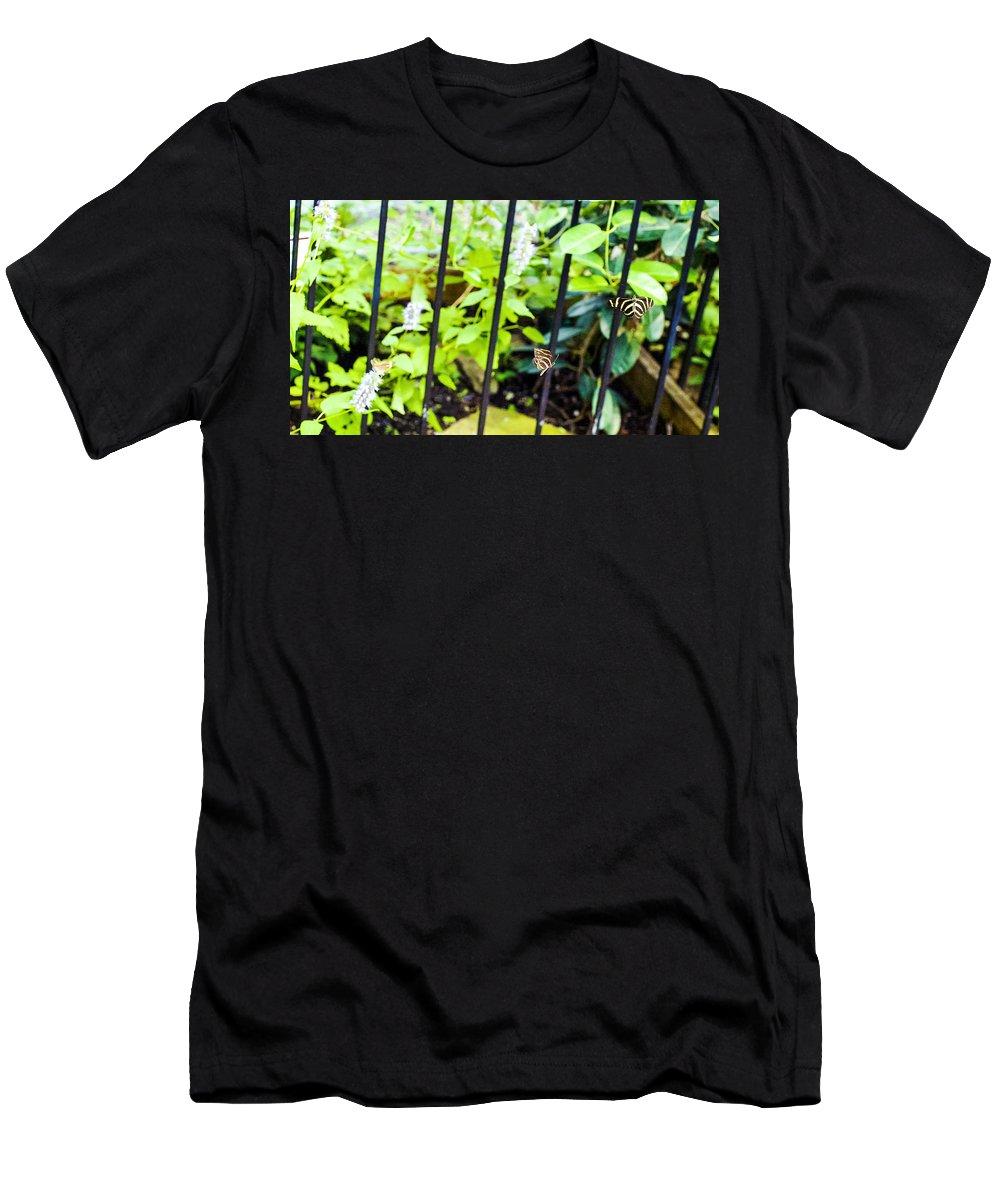 Nj Men's T-Shirt (Athletic Fit) featuring the photograph Zebra V by Pablo Rosales