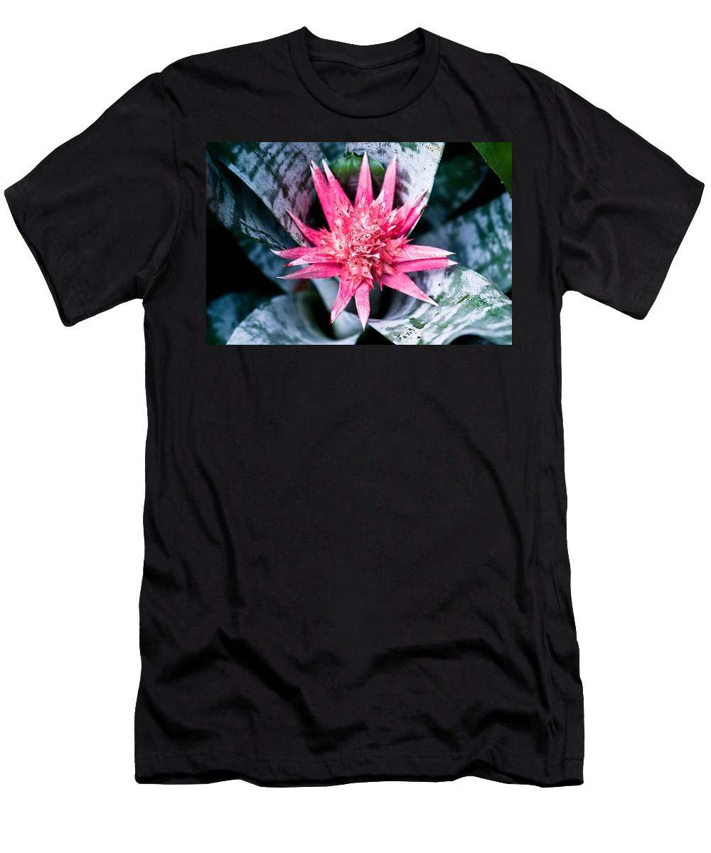 Aechmea Men's T-Shirt (Athletic Fit) featuring the photograph Aechmea Fasciata Bromeliad Flower by U Schade