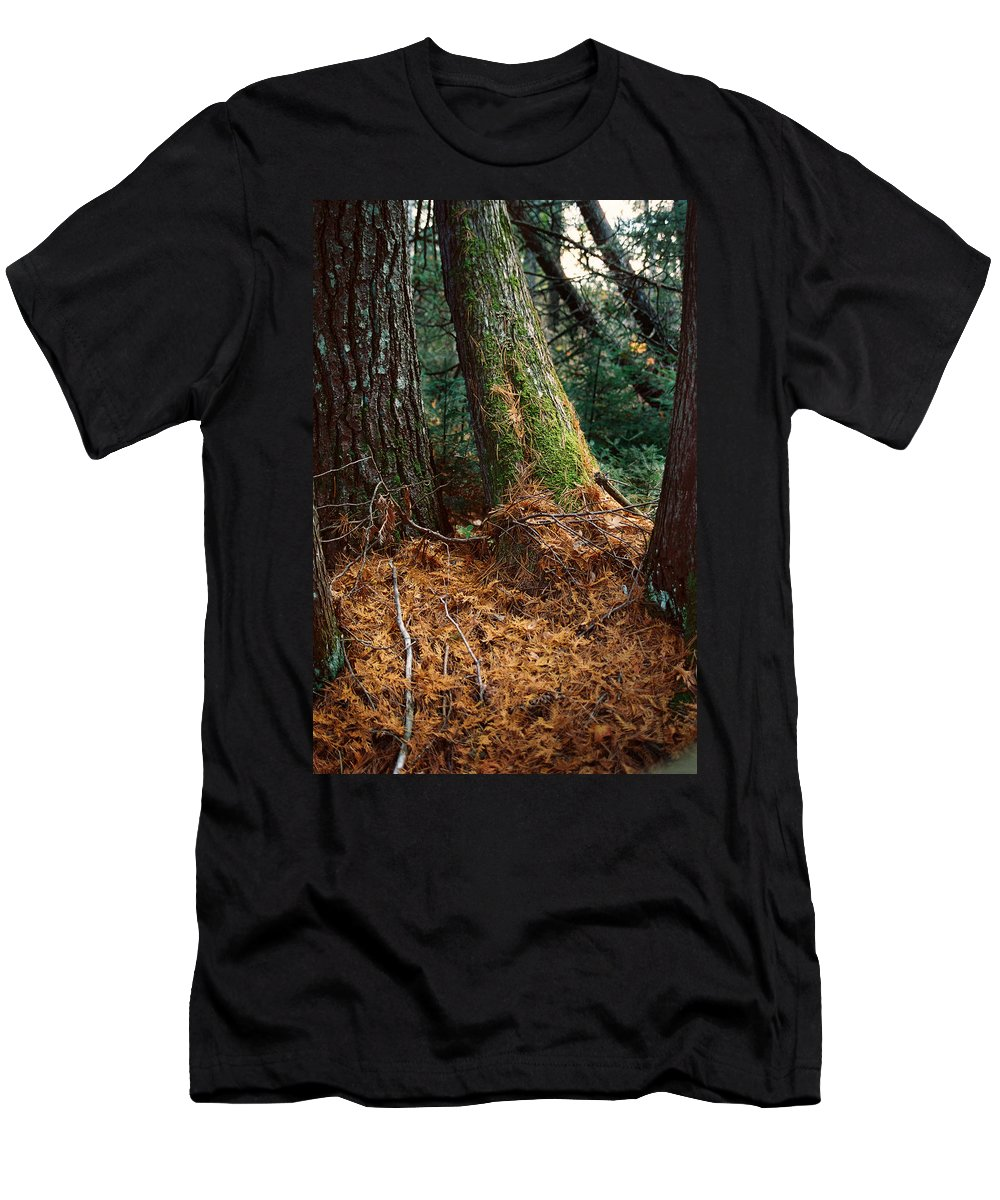 Trees Men's T-Shirt (Athletic Fit) featuring the photograph Fall Carpet by Ron Weathers