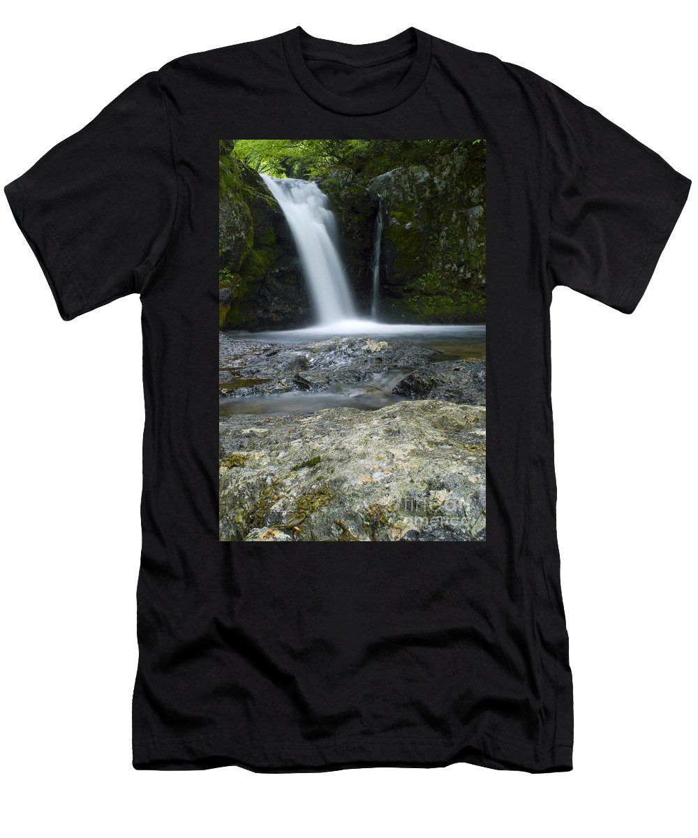Andrias Japonicus Men's T-Shirt (Athletic Fit) featuring the photograph Andrias Habitat by Dante Fenolio