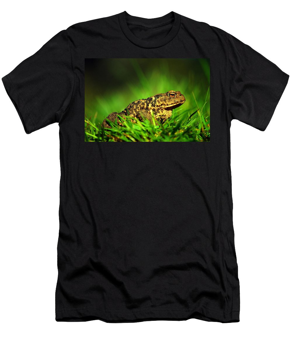 Common Toad Men's T-Shirt (Athletic Fit) featuring the photograph Common Toad by Gavin Macrae