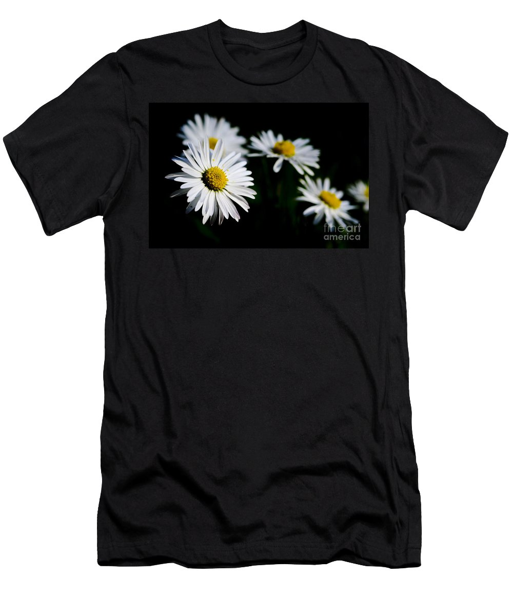 Flower Men's T-Shirt (Athletic Fit) featuring the photograph Daisy Flowers by Mats Silvan