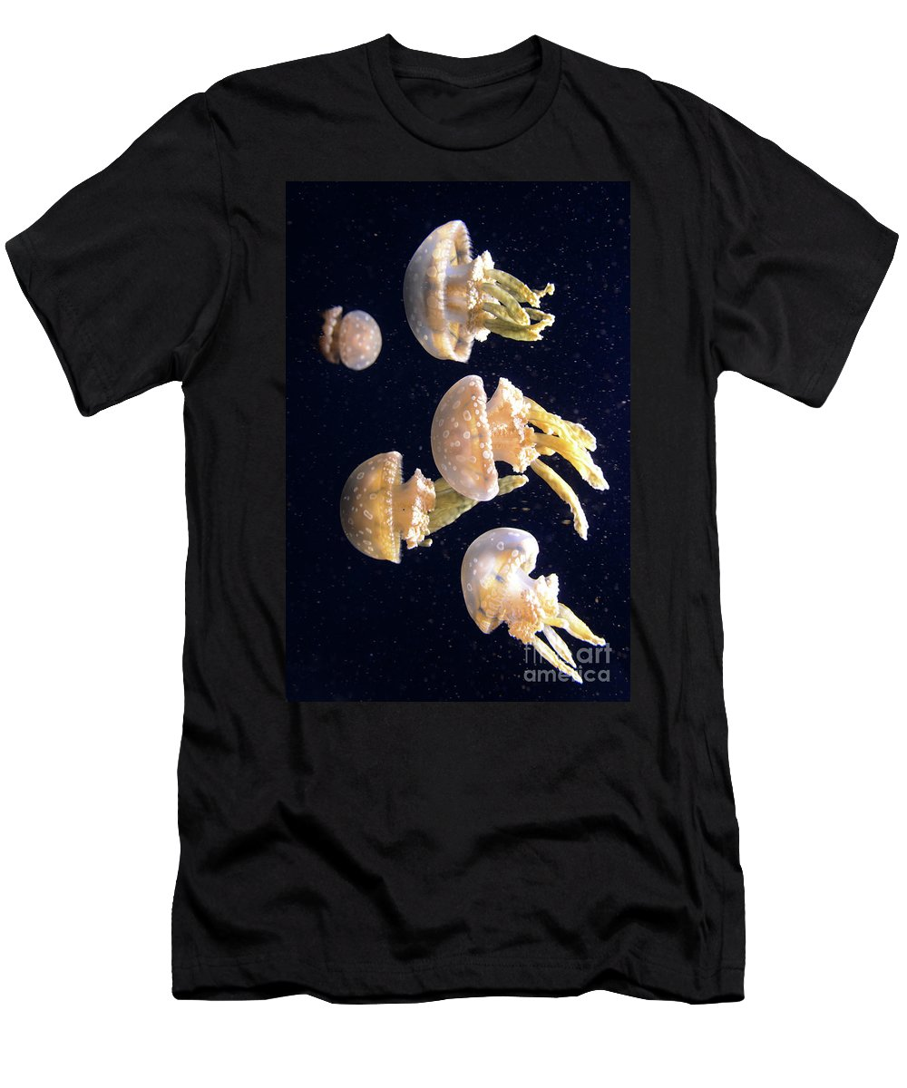 Jellyfish Men's T-Shirt (Athletic Fit) featuring the photograph Jellyfish 3 by Bob Christopher