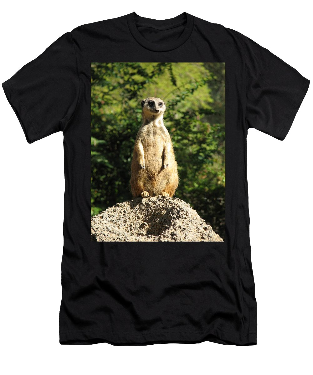 Meerkat Men's T-Shirt (Athletic Fit) featuring the photograph Sentinel Meerkat by Carla Parris