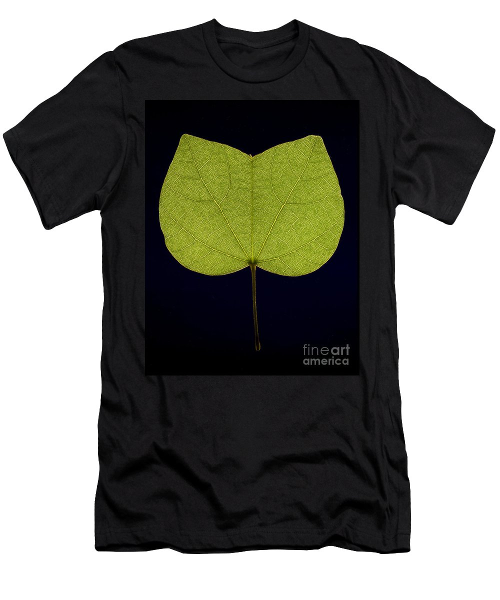 Leaf Men's T-Shirt (Athletic Fit) featuring the photograph Two Lobed Leaf by Raul Gonzalez Perez