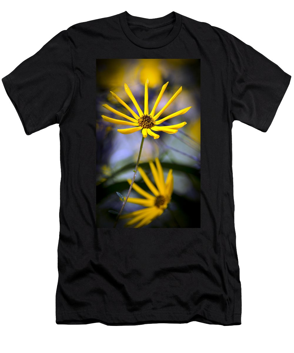 Swamp Daisy T Shirts Fine Art America
