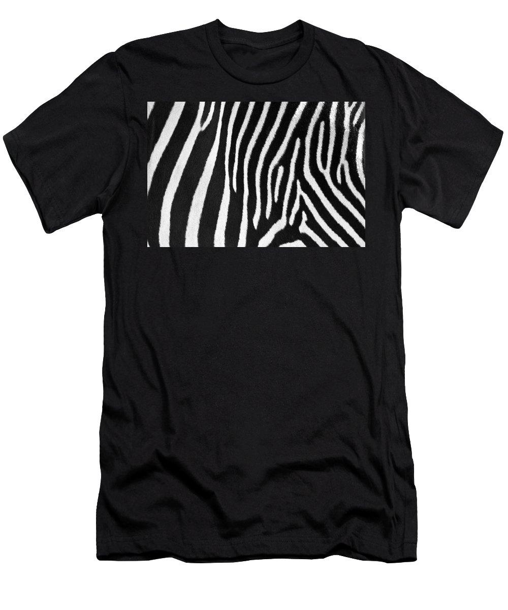 Zebra Men's T-Shirt (Athletic Fit) featuring the photograph Zebra Stripes by David Pringle