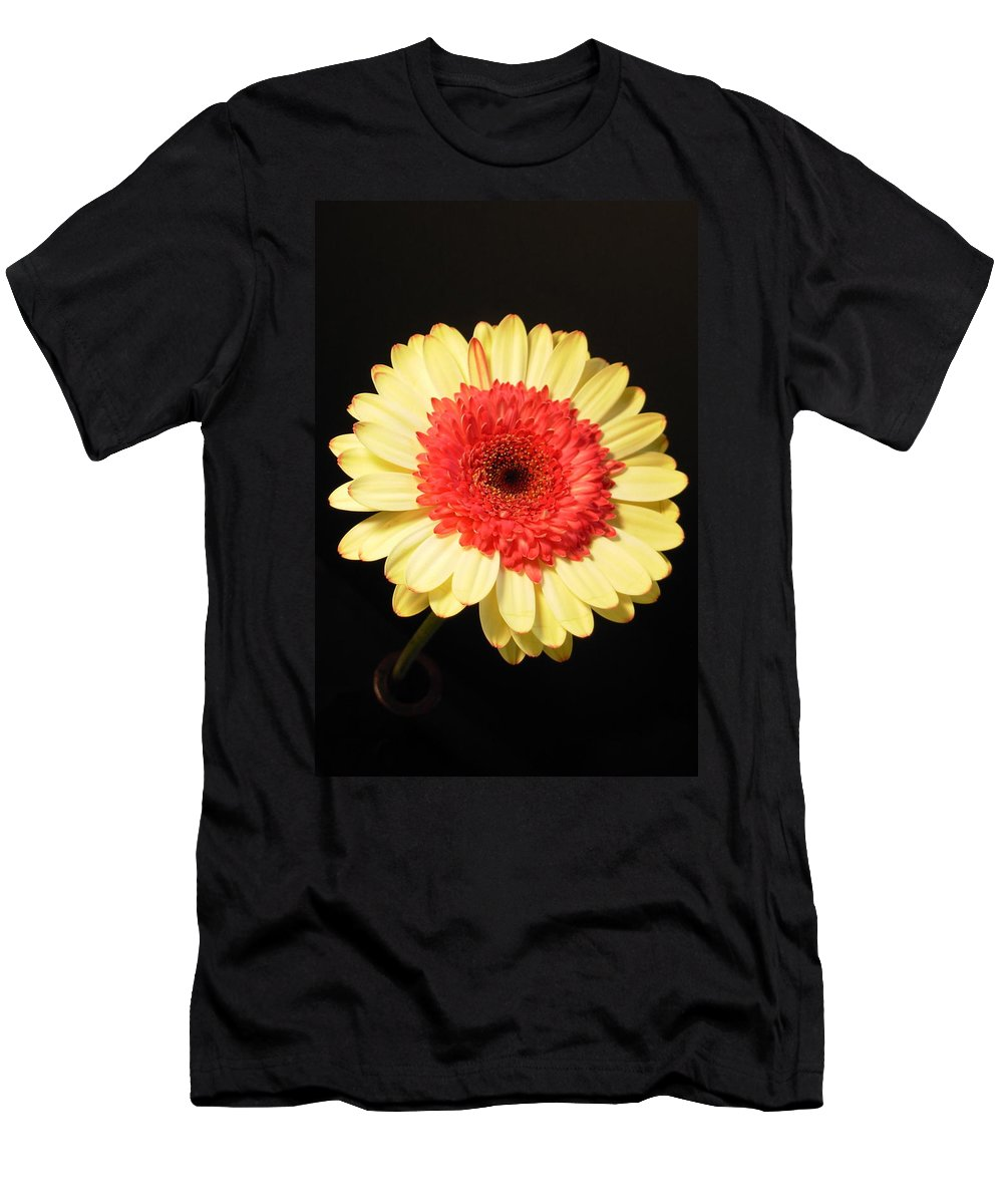 Gerbera Photographs Men's T-Shirt (Athletic Fit) featuring the photograph 2973-001 by Kimberlie Gerner