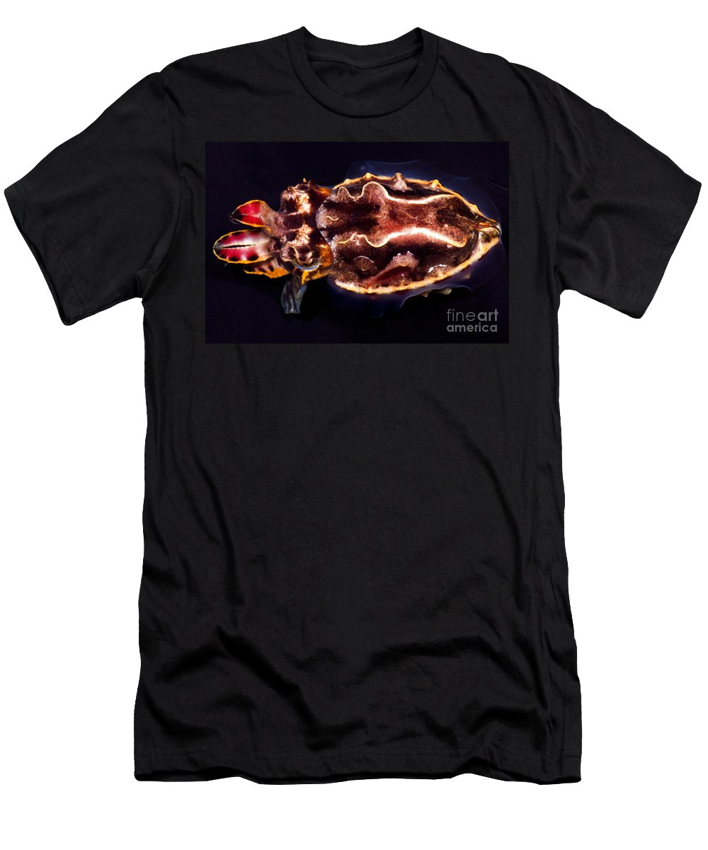 Flower Cuttlefish Men's T-Shirt (Athletic Fit) featuring the photograph Flamboyant Cuttlefish by Dante Fenolio