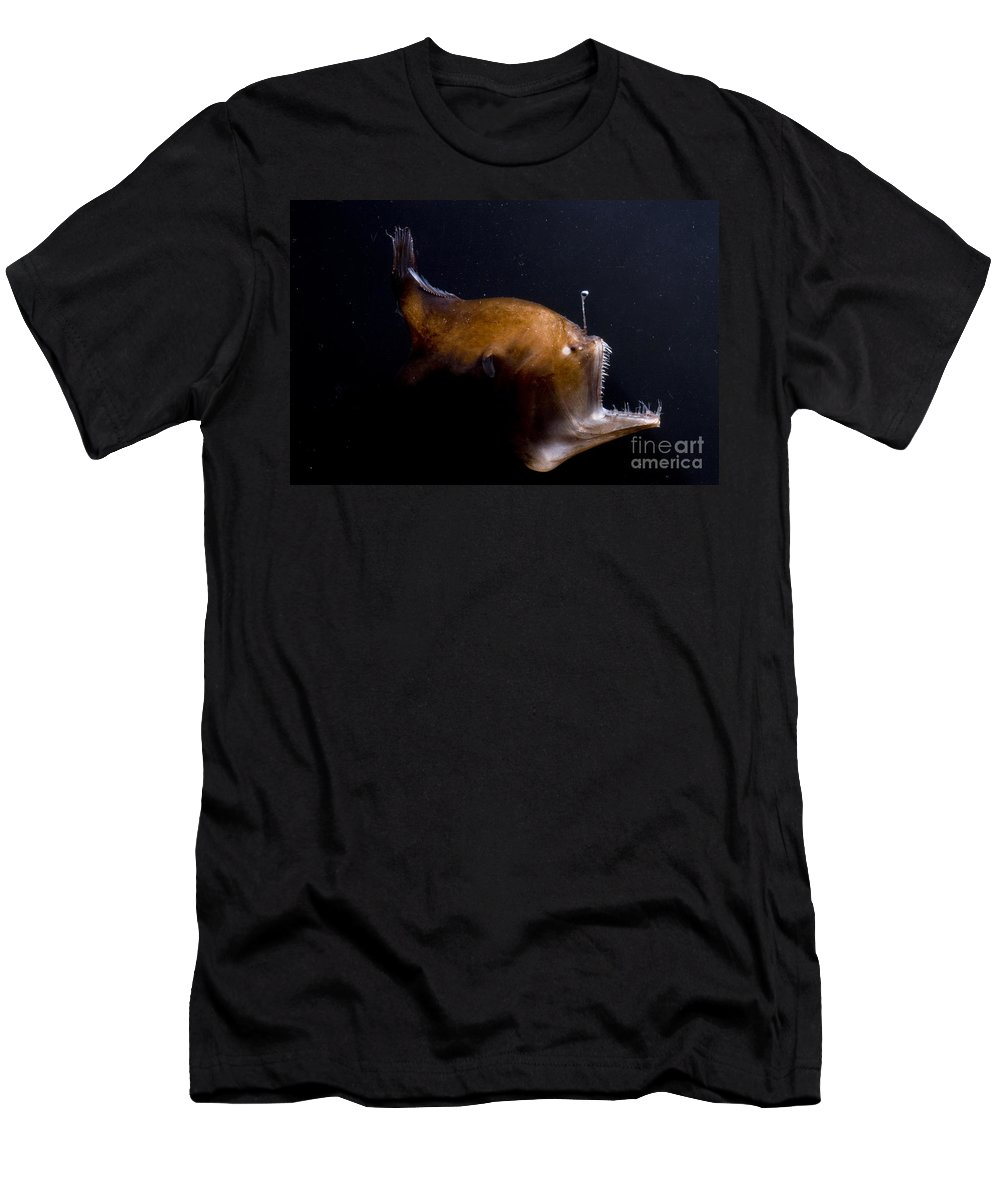 Fish Men's T-Shirt (Athletic Fit) featuring the photograph Deep Sea Angler by Dante Fenolio