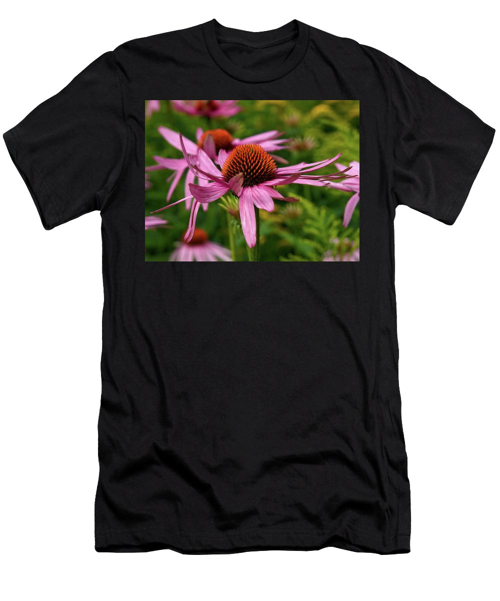 Jouko Lehto Men's T-Shirt (Athletic Fit) featuring the photograph Eastern Purple Coneflower by Jouko Lehto