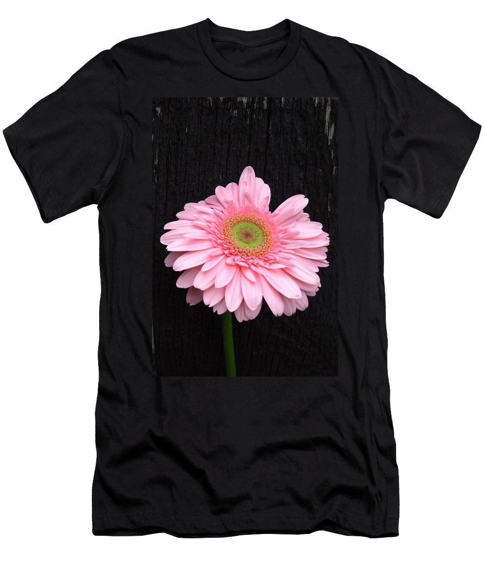 Gerbera Photographs Men's T-Shirt (Athletic Fit) featuring the photograph 899911a2 by Kimberlie Gerner
