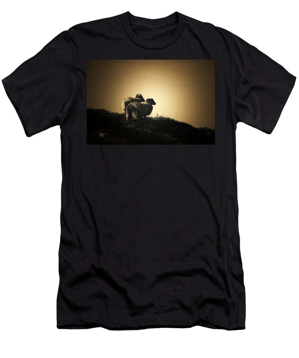 Hebrideans Men's T-Shirt (Athletic Fit) featuring the photograph A Bleak Outlook by Gavin Macrae