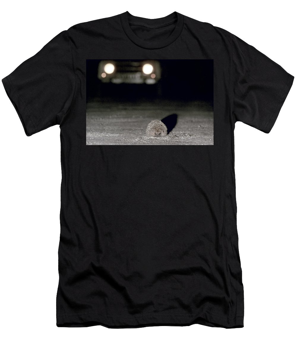 Automobile Men's T-Shirt (Athletic Fit) featuring the photograph A Hedgehog by Granger