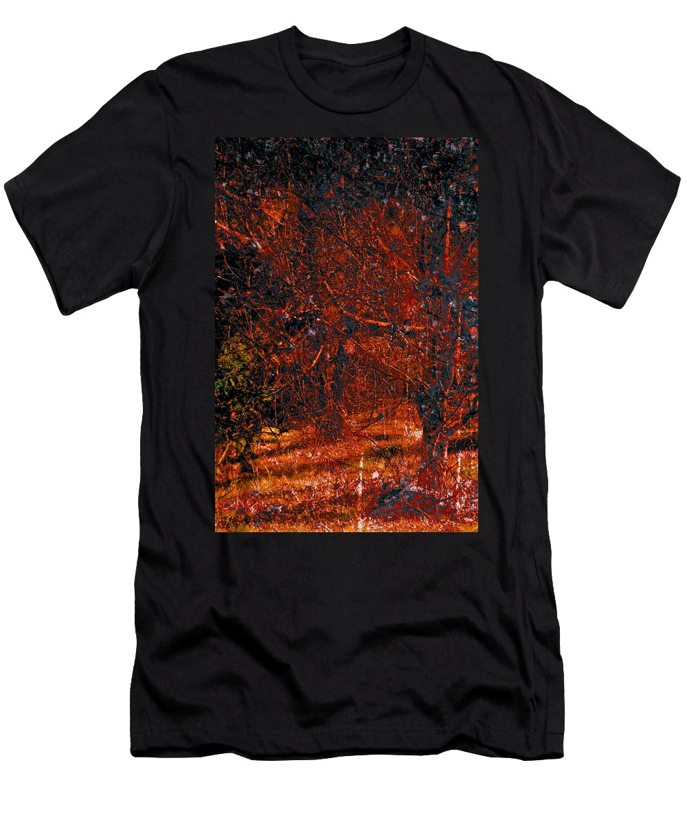 Abstract Men's T-Shirt (Athletic Fit) featuring the photograph Abstract 125 by Pamela Cooper