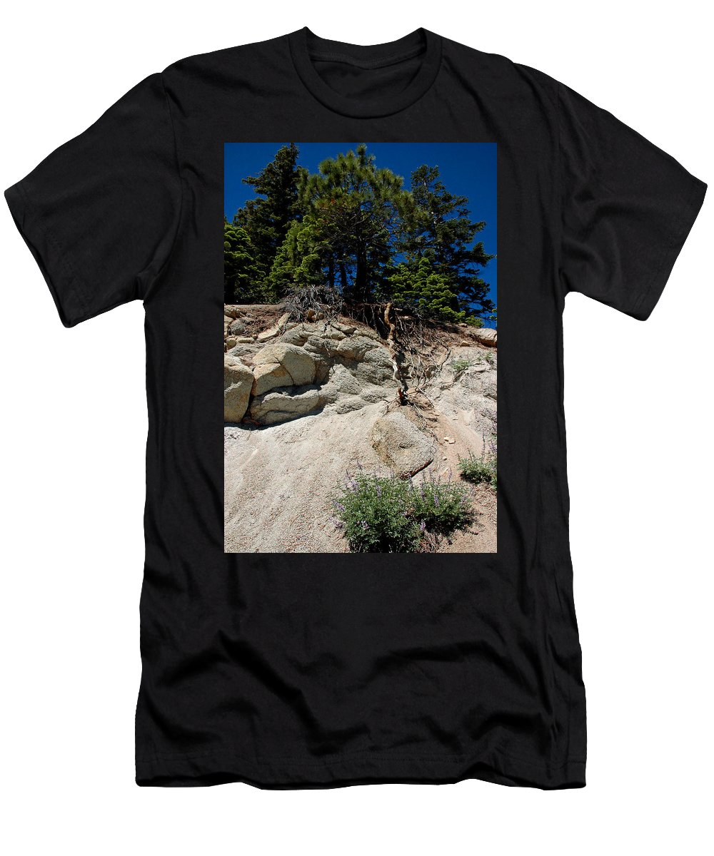 Usa Men's T-Shirt (Athletic Fit) featuring the photograph Alpine Pine Hangs On For Life by LeeAnn McLaneGoetz McLaneGoetzStudioLLCcom