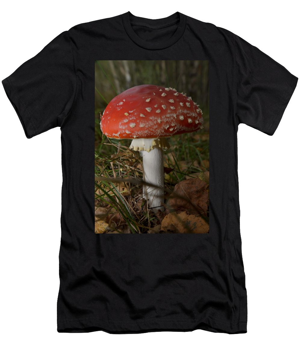 Amanita Men's T-Shirt (Athletic Fit) featuring the photograph Amanita Muscaria by Michael Goyberg