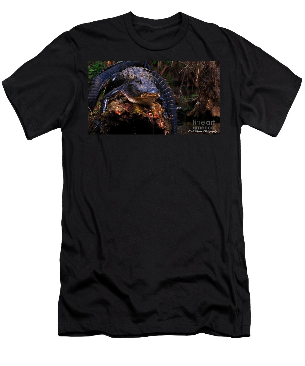 American Alligator Men's T-Shirt (Athletic Fit) featuring the photograph American Alligator On A Cypress Tree by Barbara Bowen