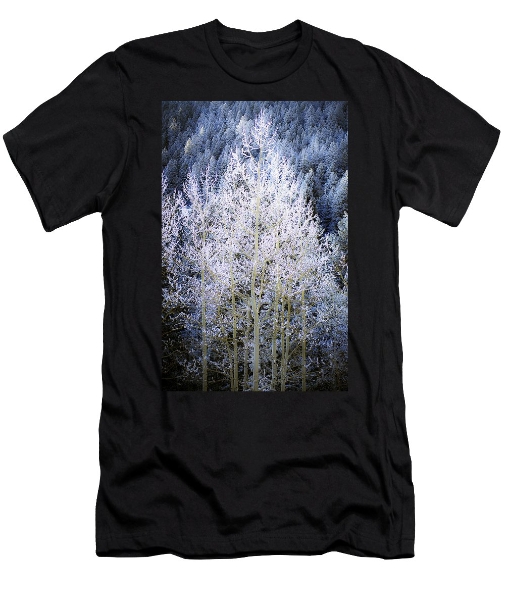Trees Men's T-Shirt (Athletic Fit) featuring the photograph Aspen Lace by Beth Riser