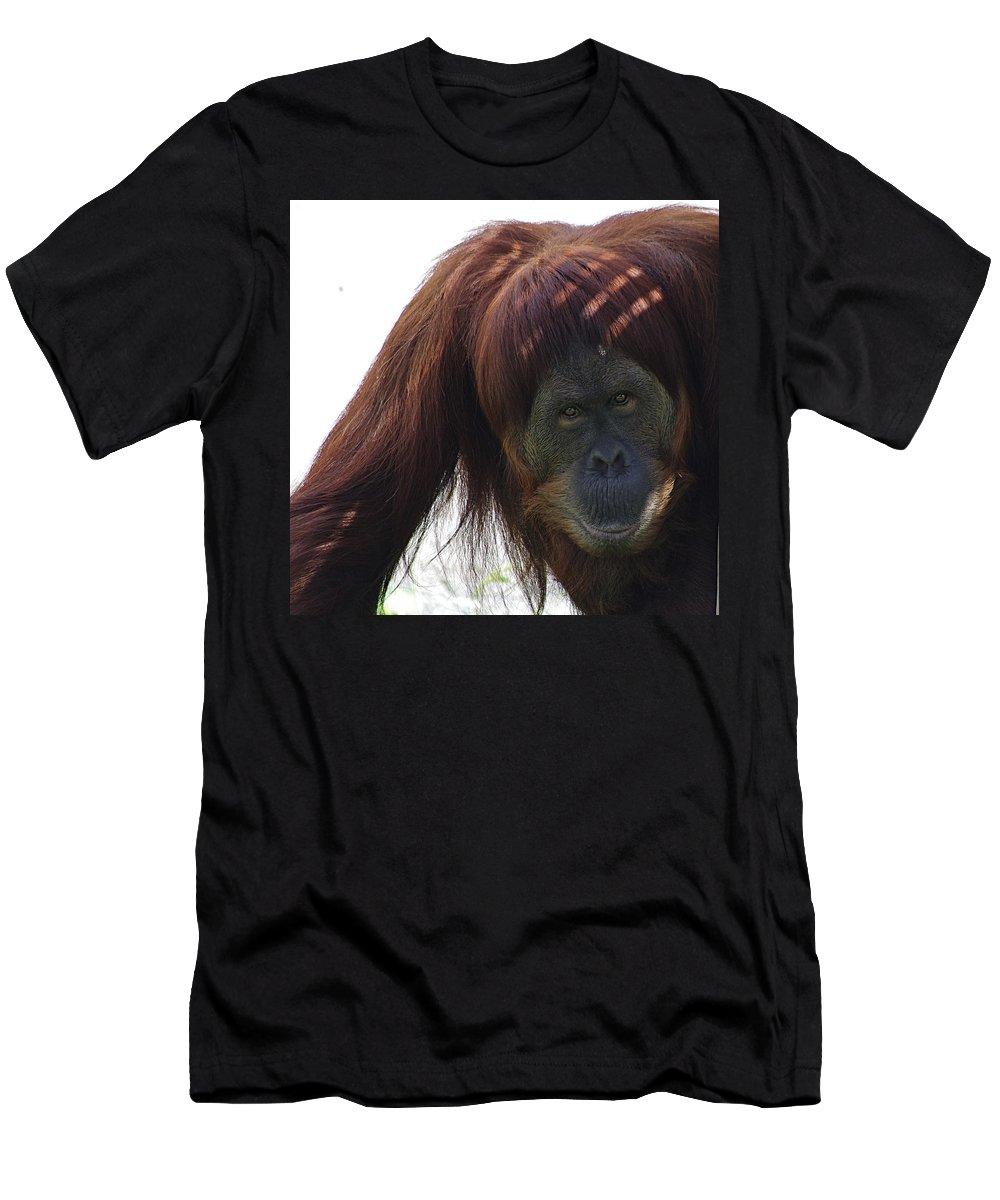 Orangutan Men's T-Shirt (Athletic Fit) featuring the photograph Auburn Bangs by Jenny Gandert