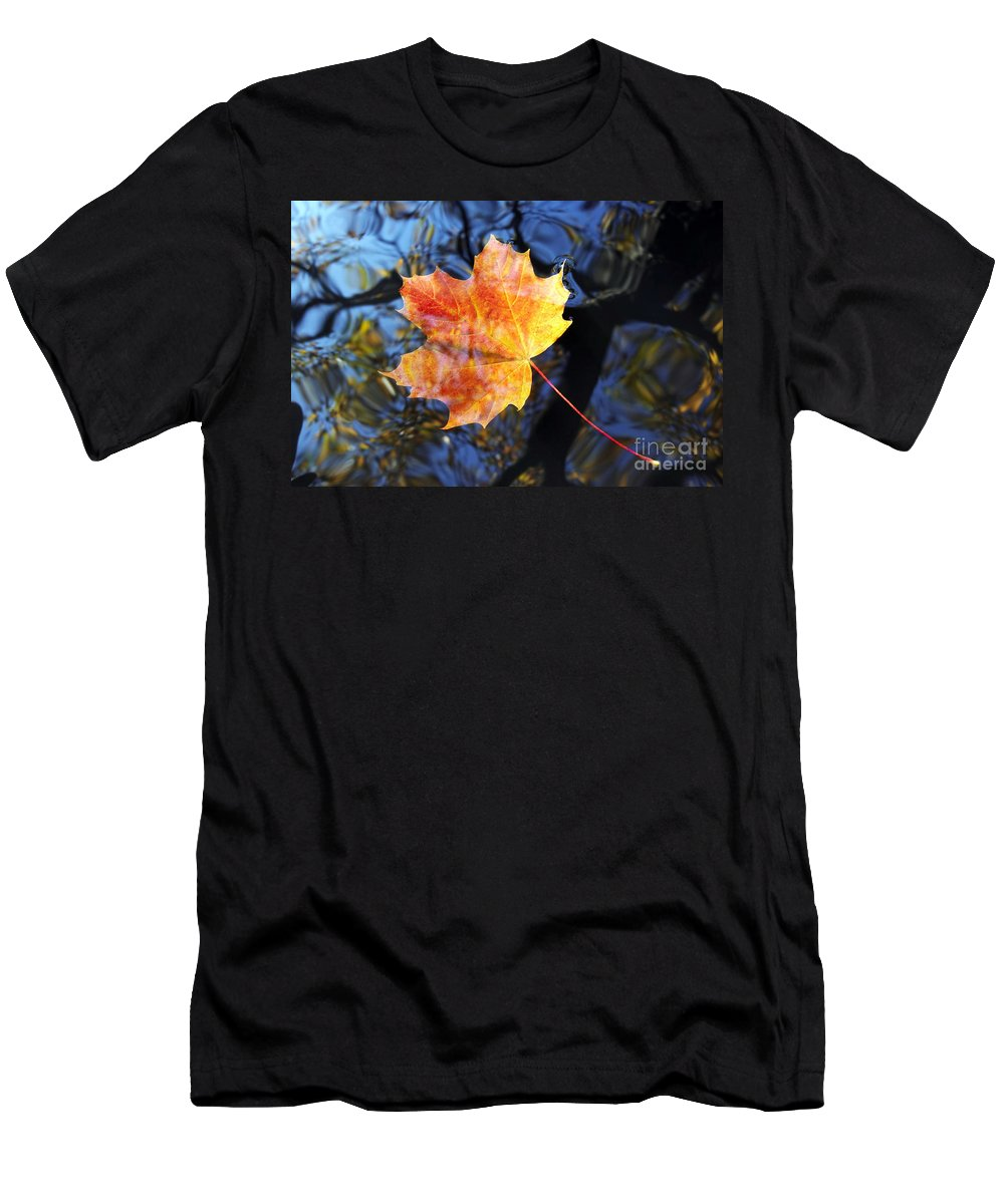 Leaf Men's T-Shirt (Athletic Fit) featuring the photograph Autumn Leaf On The Water Level by Michal Boubin