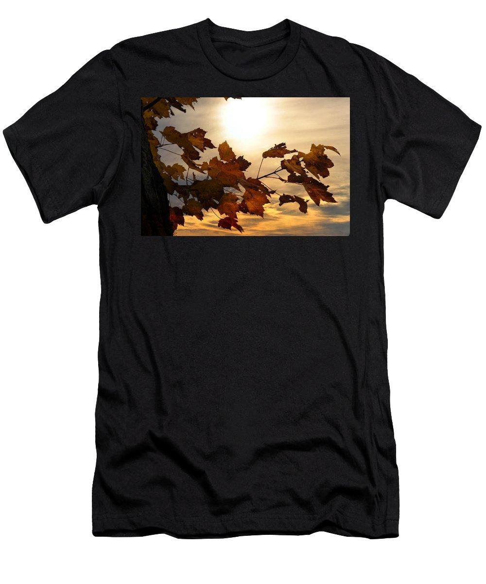 Autumn Men's T-Shirt (Athletic Fit) featuring the photograph Autumn Splendor by Bill Cannon