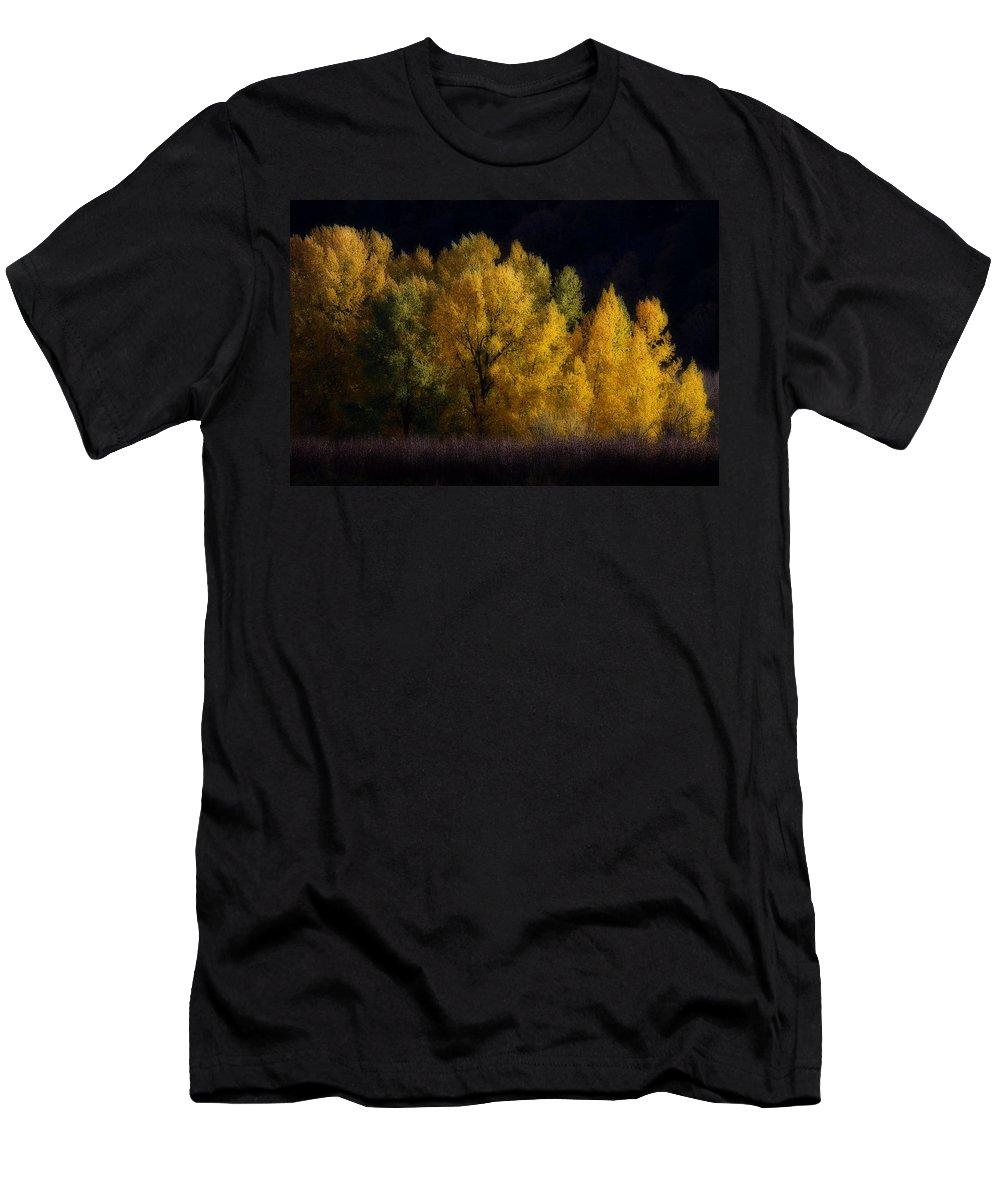Autumn's Last Hurrah Men's T-Shirt (Athletic Fit) featuring the photograph Autumn's Last Hurrah by Wes and Dotty Weber