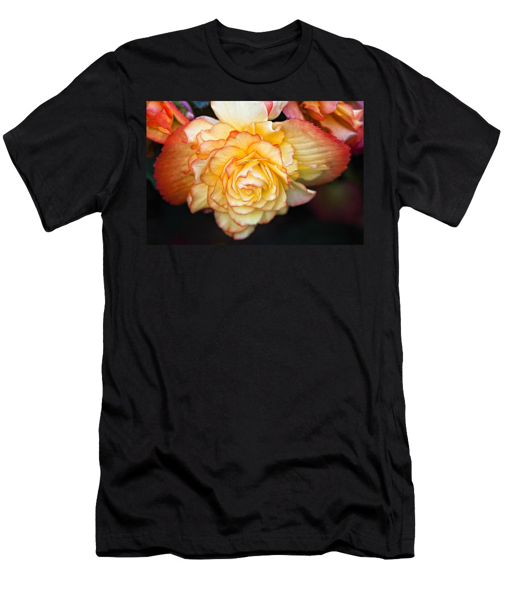 Begonia Men's T-Shirt (Athletic Fit) featuring the photograph Be Gentle by Steve Harrington