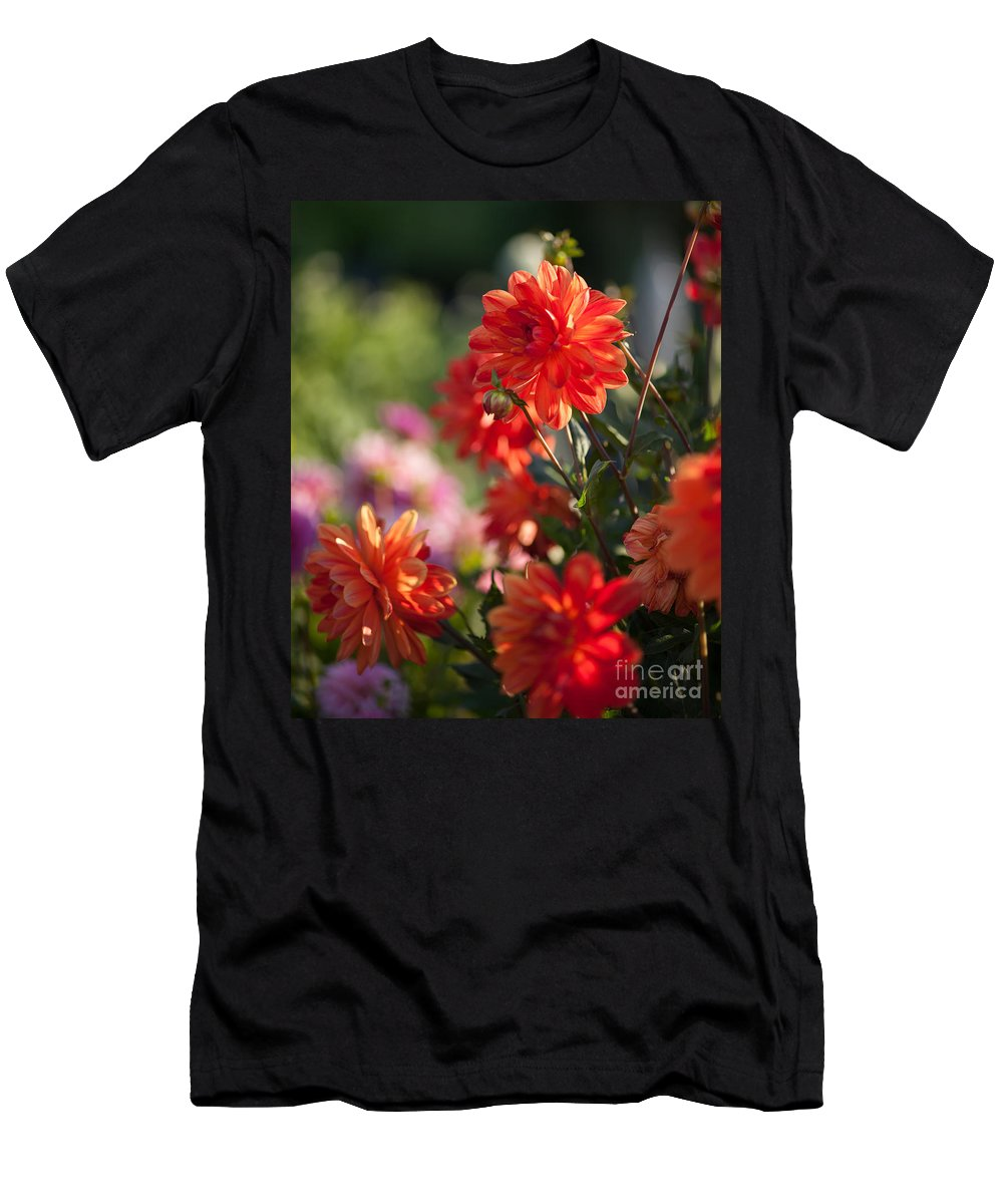 Flower Men's T-Shirt (Athletic Fit) featuring the photograph Beautiful Day by Mike Reid