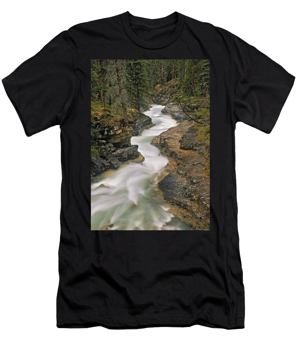 Light Men's T-Shirt (Athletic Fit) featuring the photograph Beauty Creek, Banff National Park by Darwin Wiggett